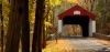 Autumn In Bucks County- Activity Guide